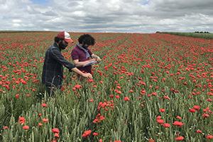Farm-based organic variety trials network