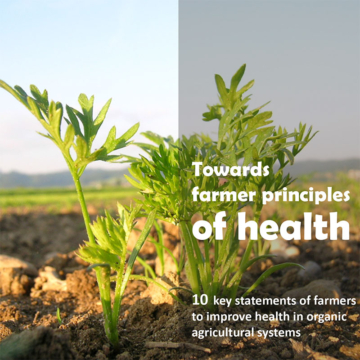 Download Towards Farmer Principles of Health